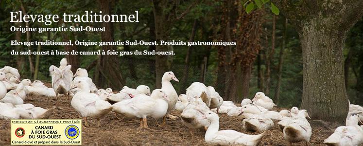 foie gras béarn